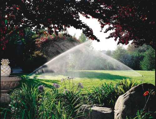 The Importance of an Irrigation System