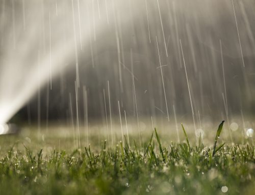 Five Things to Know About Sprinkler Maintenance
