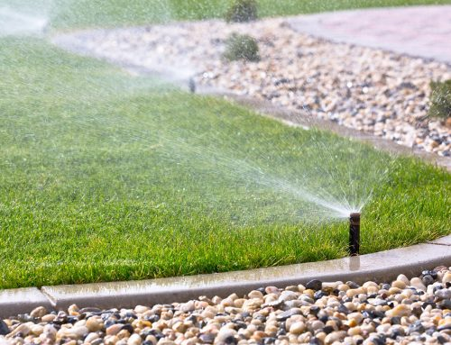 Why You Should Hire a Sprinkler System Professional in Clearwater, Florida