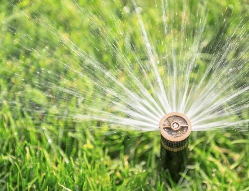 How to choose an Irrigation System Type in Tampa, Florida