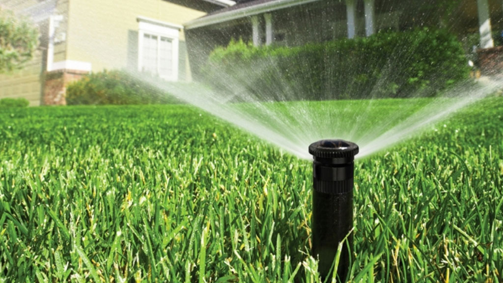 What Type of Irrigation Do I Need?