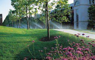 Commercial Sprinkler System