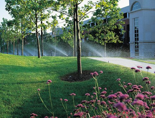 Does Your Business Need a Commercial Sprinkler Installation?