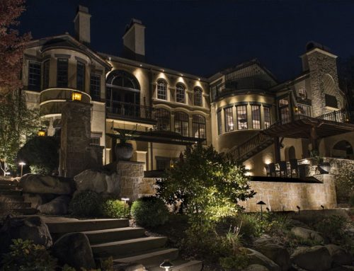 Why You Should Hire a Professional Landscape Lighting Designer in Tampa
