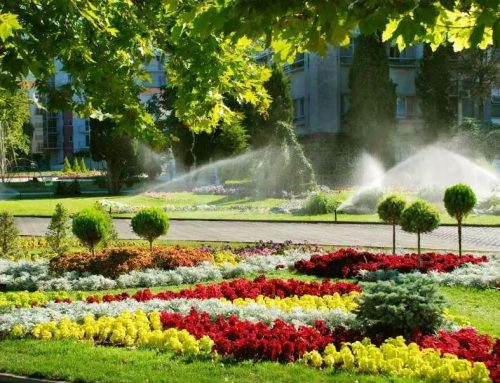 Top 5 Reasons Why It's Worth Repairing or Replacing your Sprinkler System